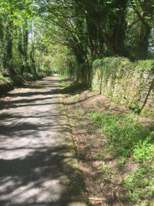 Vienna Woods, kleine Straße Richtung Mayfield
