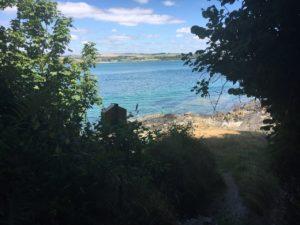 Courtmacsherry, Wanderweg nach Wood Point mit tollen Ausblicken