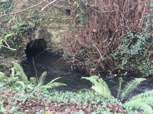 Glen River Park, canal