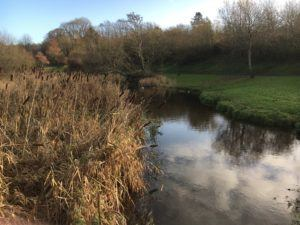 Glen River Park, stream with pond