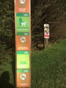 Moanbaun forest, advises for good behavior