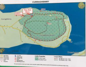 Curraghbinny, overview in map