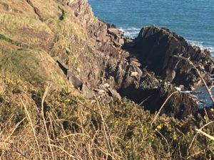 Ballycotton Cliffwalk, view to the stairs that leads to the rocky part