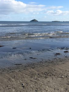 Ballynamona Beach, view to Ballycotton lighthouse