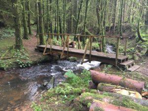 Ballard waterfall, bridges to cross