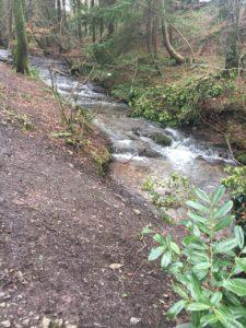 Garryduff, stream along the walking trail