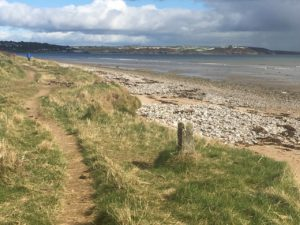 Youghal beaches, between beach and bird trail