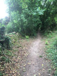 Ballyannan, walking path