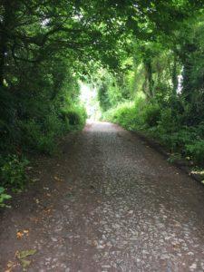 Ballyannan, walking trail