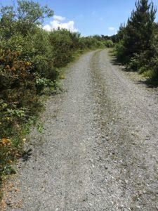 Mount Hillary, walking trail