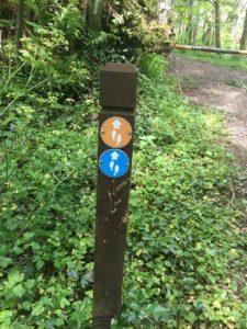 Garretstown woods, path markings
