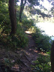 Blackwater River Walk, roots