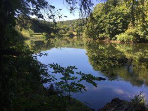 Blackwater River Walk, scenic view
