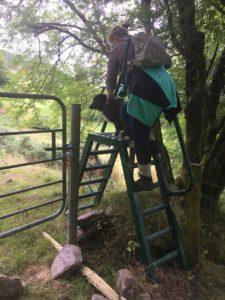 Inchileigh, stiles to climb over